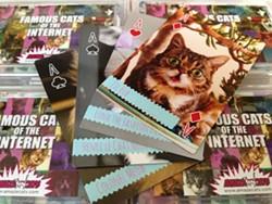 amazecats_cats_of_the_internet_55.jpeg.jpg