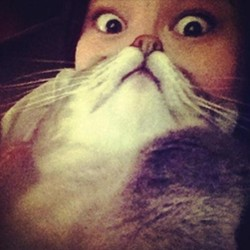 The trick with cat bearding is to make sure your kitty's nose is lined up with your own.