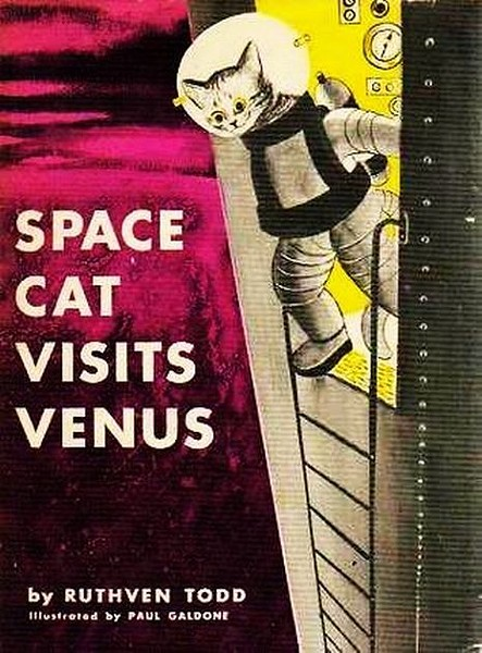 space_cat_venus.jpg