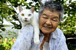 grandma_and_cat.jpg