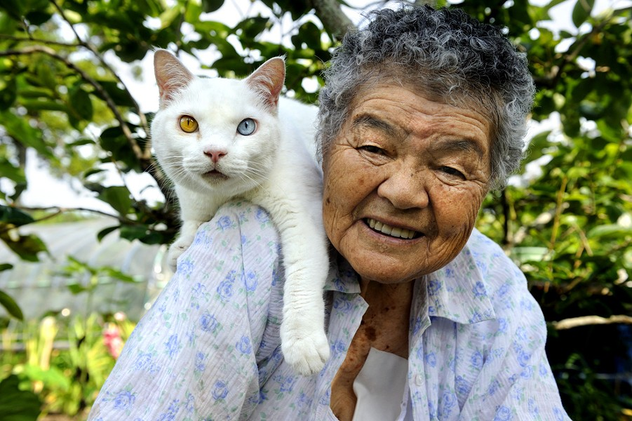 grandma_and_cat.jpg