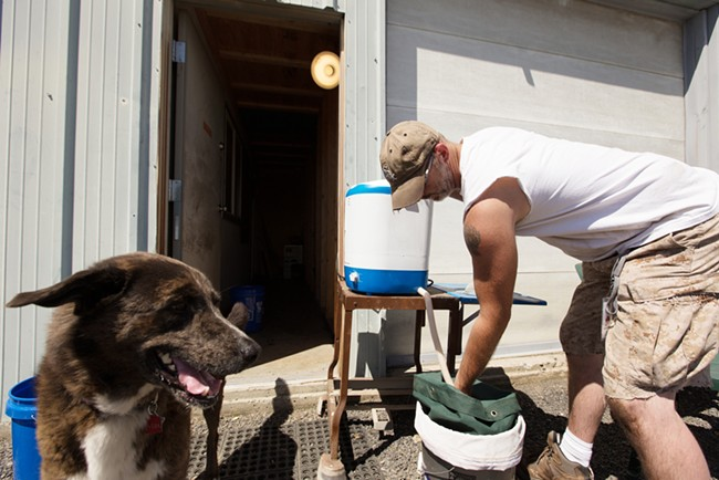 Co-Owner Wesley Tuttle drains a Bubble Master while making hash. His 8 year old Border Collie mix Max walks by. - YOUNG KWAK