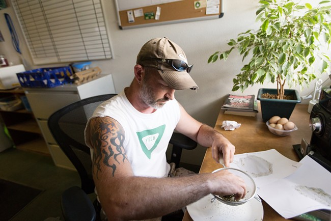 Co-Owner Wesley Tuttle uses a strainer to break apart hash. - YOUNG KWAK