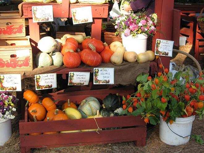 Colorful fall produce is available at the Hayden Farmers Market through Oct. 18. - KOOTENAI COUNTY FARMERS MARKET