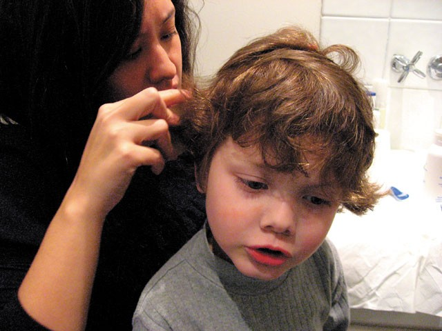 Combating lice requires calm.