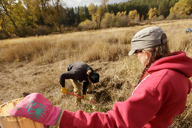 Diane Delanoy, right, watches her husband Ken dig a hole to plant a tree. - YOUNG KWAK