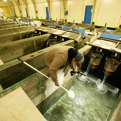 Spokane Tribe Fish Hatchery