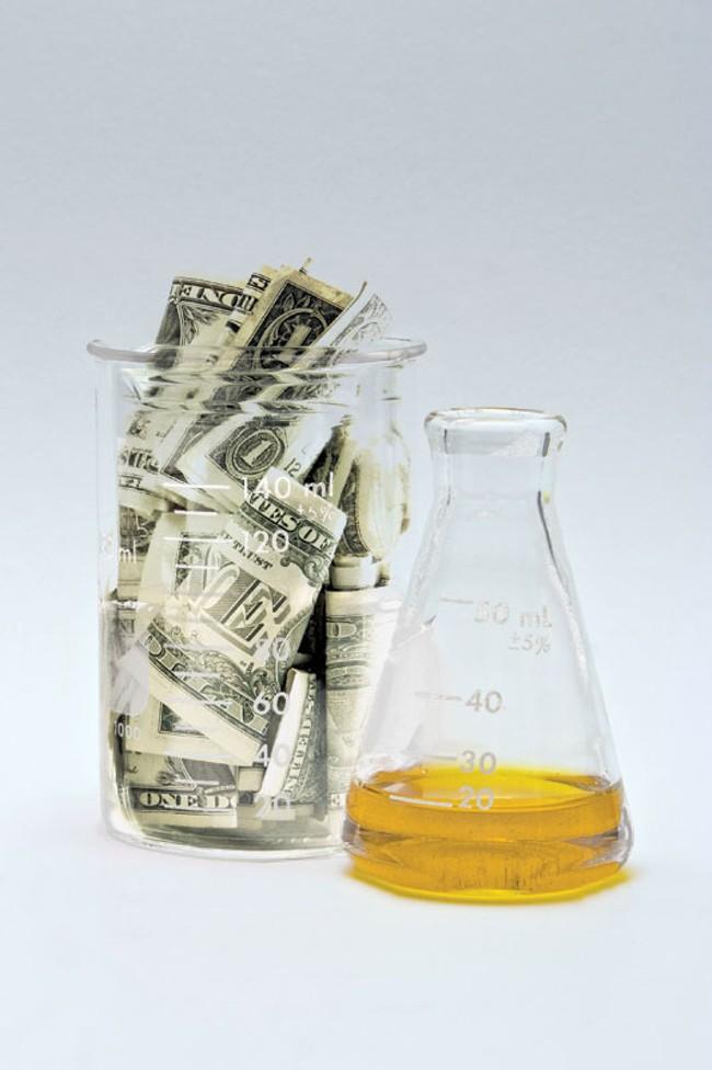 cash-grants.jpg