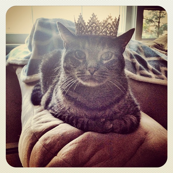 """Her Royal Highness"" Drama, from Morris Plains, NJ. Submitted by Laura Bean."