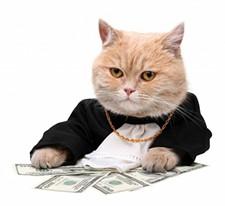 online_payments_jpg-magnum.jpg