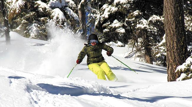 snowlander1-1.jpg