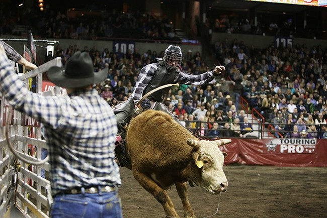 Jace Catlin, of Toledo, Wash., rides 05 Jello Shots during Flight 3. He rode 2.84 seconds before falling off the bull. - YOUNG KWAK