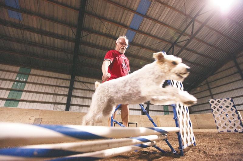 Jack Cotter, 65, runs along as his dog Tucker takes a jump at Sunrise Arena in Liberty Lake. - YOUNG KWAK