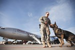 K9 Handler Senior Airman Zach Villano and his dog Spikey prepare to do a security sweep of a plane.