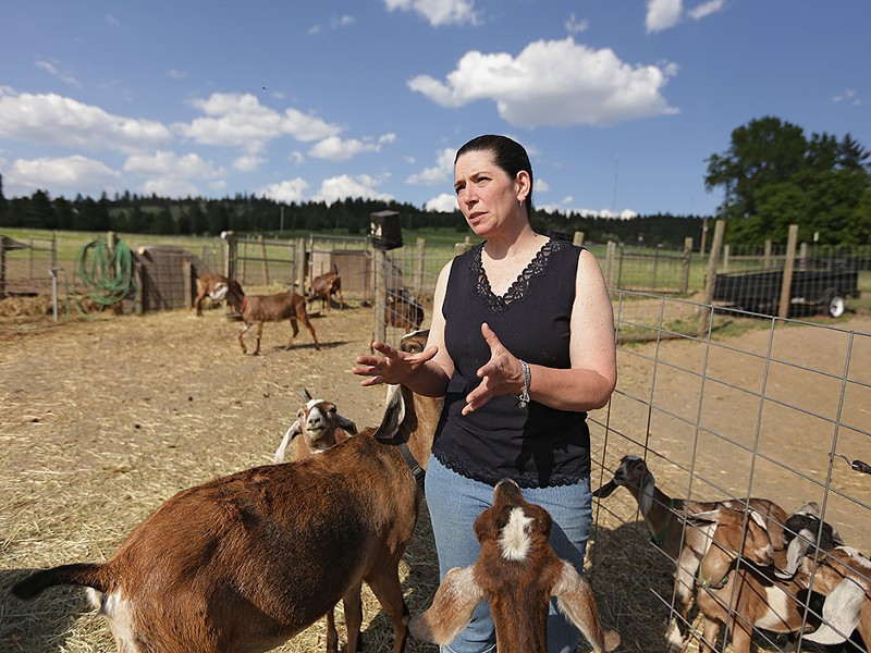 "Lorie Arnold at Heron Pond Farms: ""You\'re not going to get anything more local than right here.\"" - YOUNG KWAK"