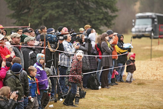 Members of the media and the general public watch an 88-foot Engelmann Spruce, destined to be the U.S. Capitol Christmas Tree, as it's cut. - YOUNG KWAK