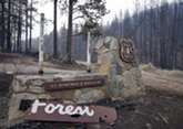A sign marking the Okanogan National Forest sits burnt and broken along Highway 20 west of Omak. - JACOB JONES