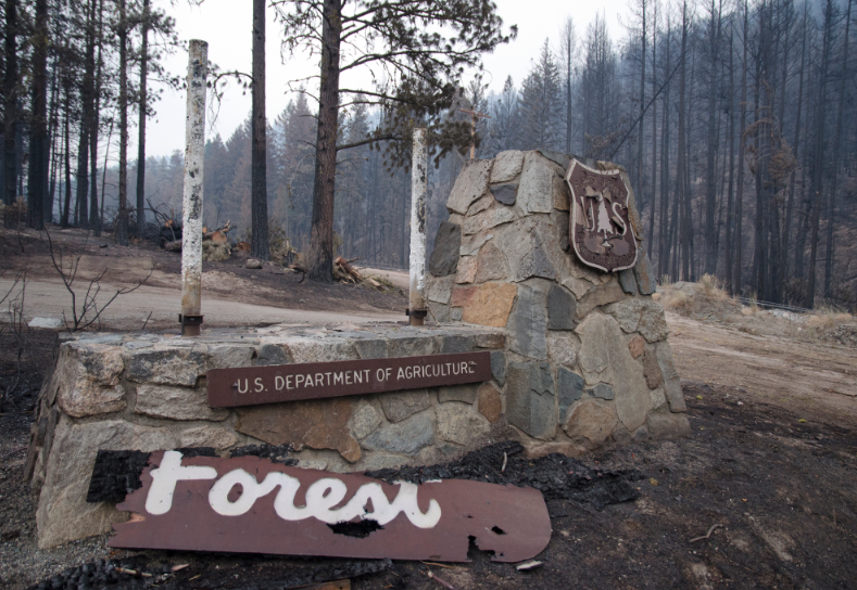 A sign for the Okanogan National Forest lies burned after the Carlton Complex fire moved through. Officials say hunting and fishing in the area still looks promising. - JACOB JONES