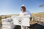 Owner Mike Durst moves a hive at Mark T. Durst and Sons.