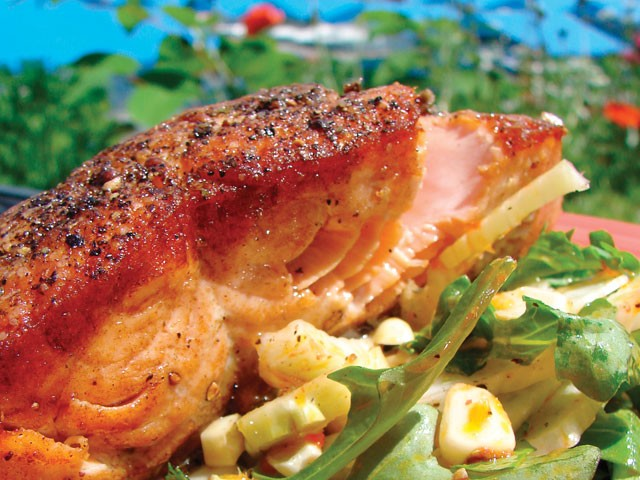Seared salmon with salad at Bistro at the Inn - CARRIE SCOZZARO