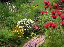 VIANN MEYER - Spokane in Bloom Garden