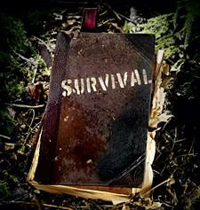 ec62ebc5_survival-425.jpg