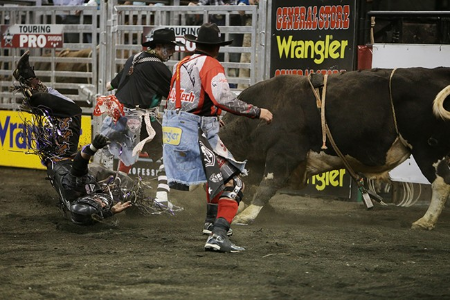 Stetson Lawrence, left, of Williston, N.D., is attacked by 973 Tornado Alley after falling off during Flight 1 on Saturday. He rode 7.41 seconds before falling off the bull. - YOUNG KWAK