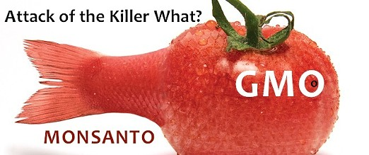tomatofish.jpg