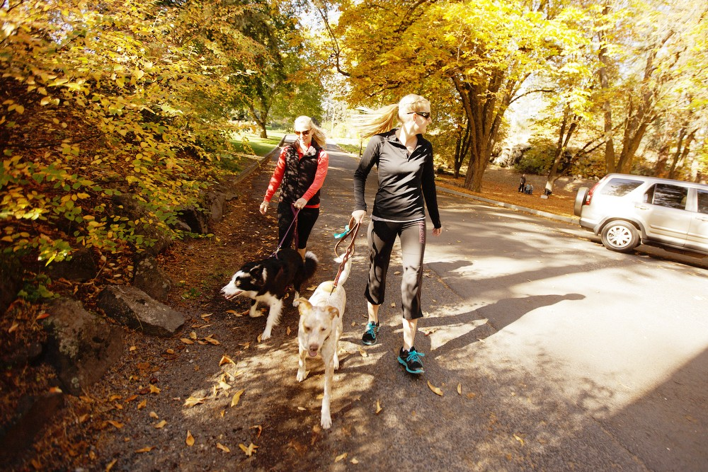 Tawny Hooley, right, walks her 3 year old Red Heeler/Australian Shepherd mix Pendleton, as Jessica Bailey walks her 2 year old Border Collie Chloe at Manito Park. - YOUNG KWAK
