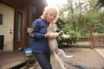 Taylor holds an Arctic and timber wolf mix puppy.