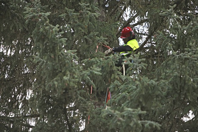 The U.S. Forest Service's Jim Beckwith sets up crane rigging. - YOUNG KWAK