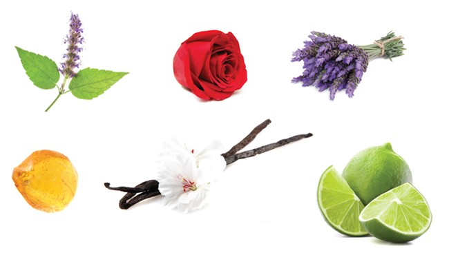 Clockwise from top right: Patchouli, Amber, Vanilla, Lime and Rose (center) fragrances are commonly featured in home scents