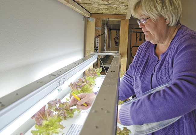 Barbara Mays tends to indoor crops at the CAC. - JACOB JONES