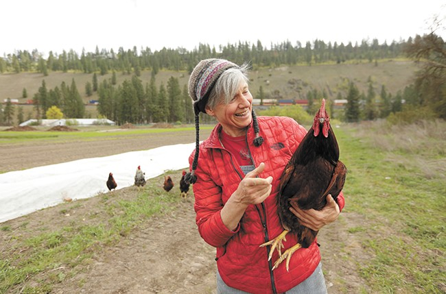 Free-range chickens help reduce bug and weed problems without chemicals. - YOUNG KWAK