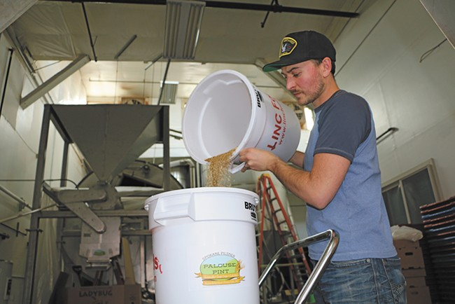 Palouse Pint maltster Joel Williamson - DAN JACKSON PHOTO