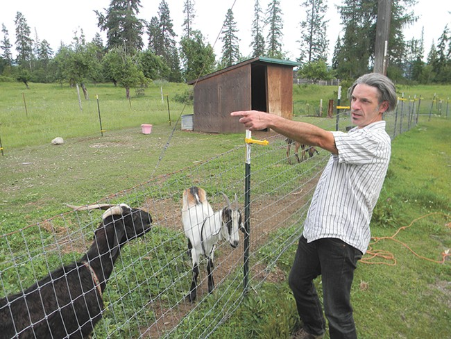 Tim Loe and his partner, Gina Britton, worry that something uphill is making their goats sick. - JAKE THOMAS