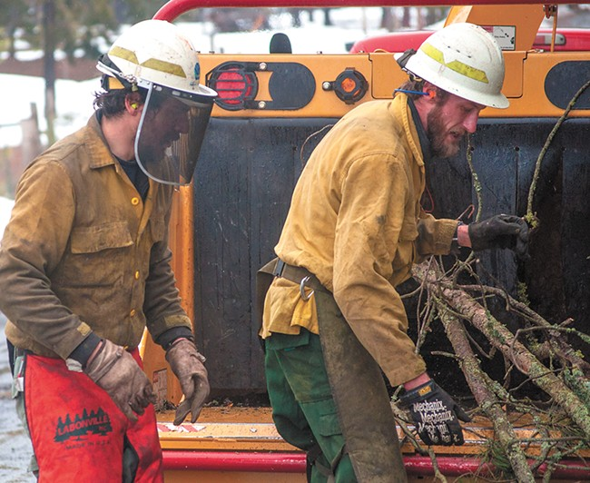 Max Leyva and Roger Holloway work with a DNR forest crew to thin trees on a property near Nine Mile Falls. - SAMANTHA WOHLFEIL