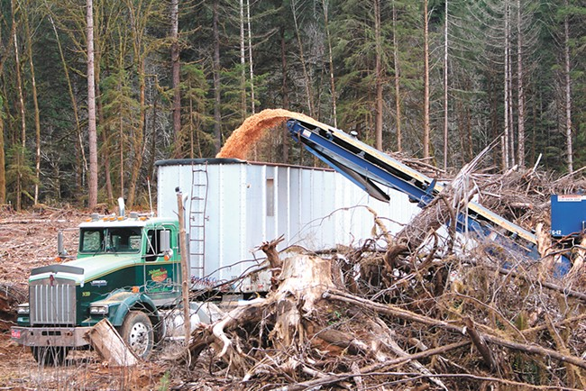 "This ""slash"" can eventually help power an airplane. - NORTHWEST ADVANCED RENEWABLES ALLIANCE PHOTO"