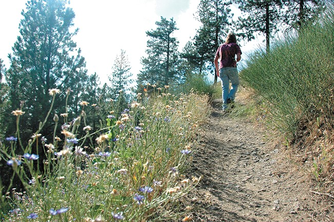 The South Hill bluff trails offer great views of Latah Valley. - YOUNG KWAK