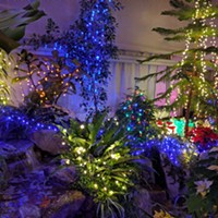 Friends of Manito Holiday Lights