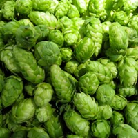 A Co-op for Hops