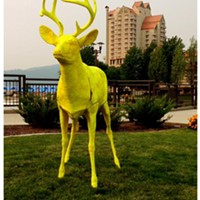 Why the Albertson Foundation is using a bright yellow deer to get Idaho kids to college