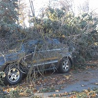 What we know so far about the record-setting windstorm that tore through the PNW