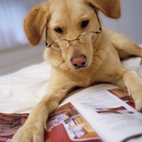 Dogs might be closer to human than we realized; plus, garden prep and Kids at Heart