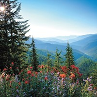 Idaho lawmakers try to weaken climate change language in school science standards — again