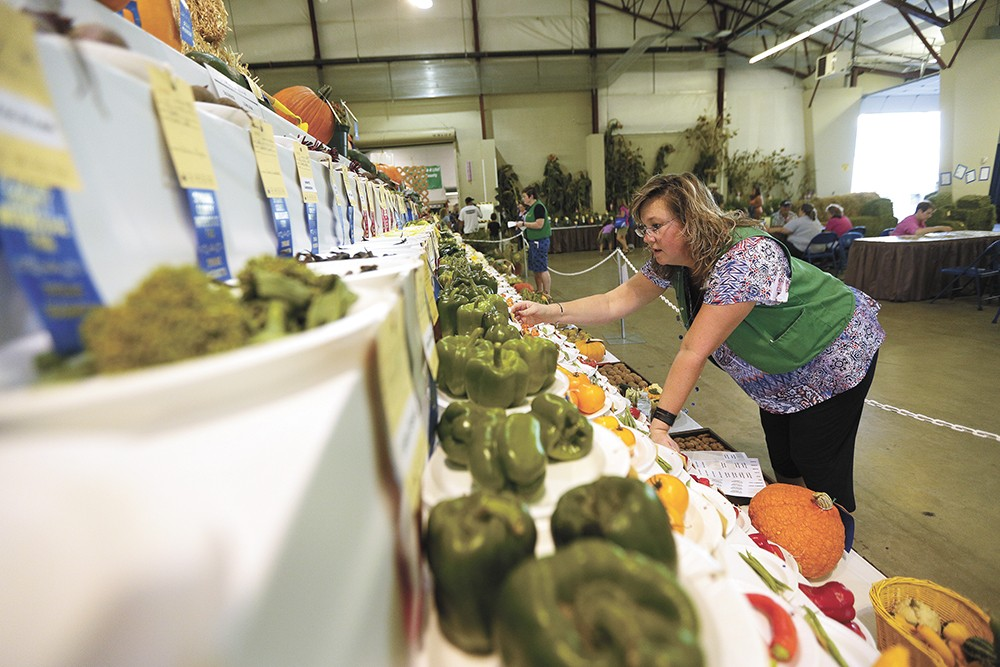 A rise in home gardening has boosted vegetable competition entries at the Spokane County Interstate Fair. - YOUNG KWAK