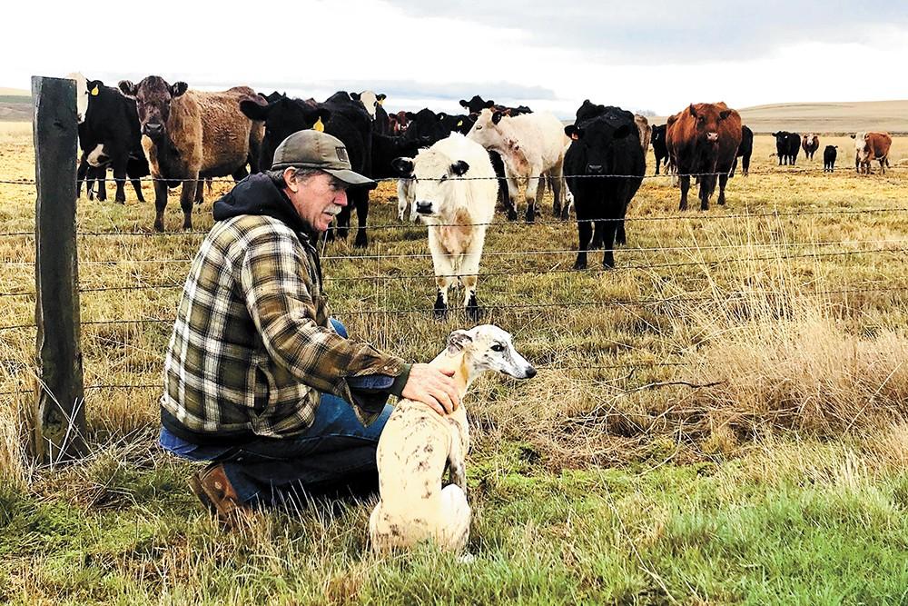 Farmer Bryan Jones grows wheat and raises cattle on the Palouse. - JEANNIE RAYMOND PHOTO