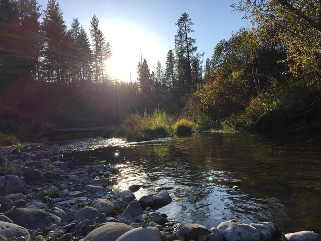 Chamokane Creek is pictured on a sunny day. - WASHINGTON STATE DEPARTMENT OF ECOLOGY PHOTO