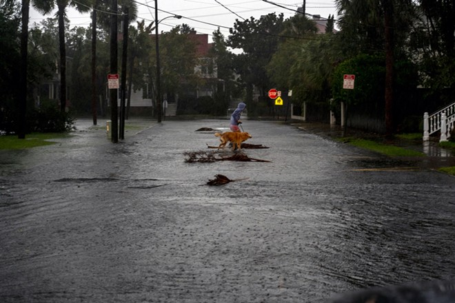 A woman walks her dog in a torrential rain  in Charleston, S.C., as Hurricane Dorian moves up the Atlantic coast on Thursday, Sept. 5, 2019. Much of the Carolina coast is being pounded by heavy rain and strong winds from the outer bands of Hurricane Dorian on Thursday morning, as the storm continues to creep on its parallel path north along the Eastern Seaboard of the United States. - JOHNNY MILANO/THE NEW YORK TIMES