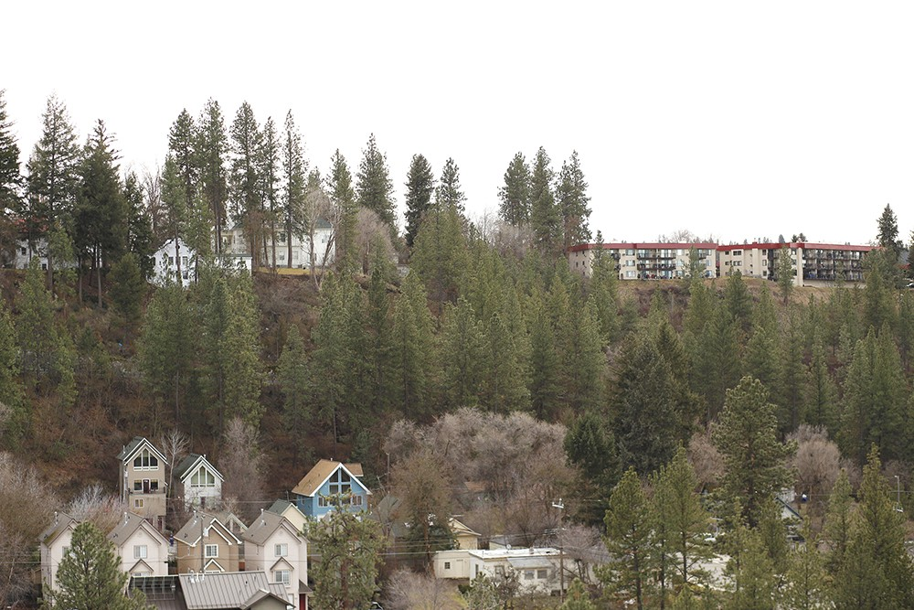 The Forest Commune project would include four houses on the hillside above Riverside Avenue to the western edge of Browne's Addition. - YOUNG KWAK PHOTO